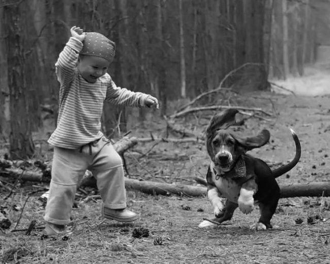 foto bambini animali14