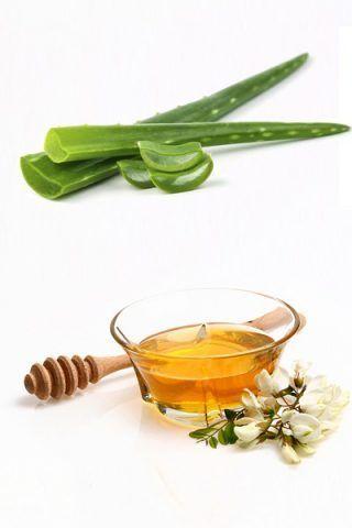 Crema idratante con succo di aloe vera e miele