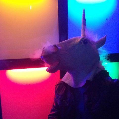 Una testa di unicorno