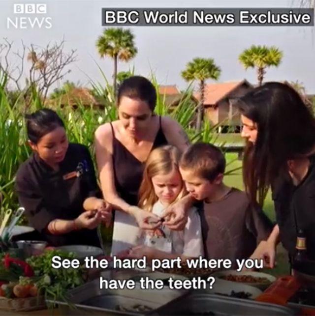 Angelina e gli insetti
