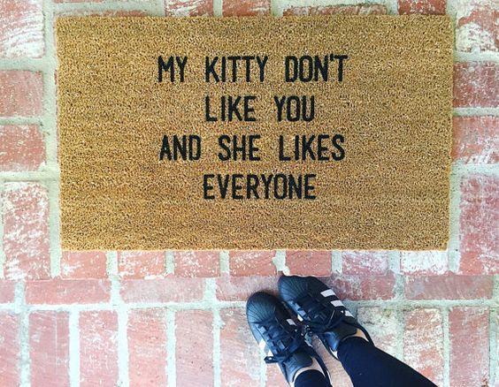 Zerbino ironico gatto