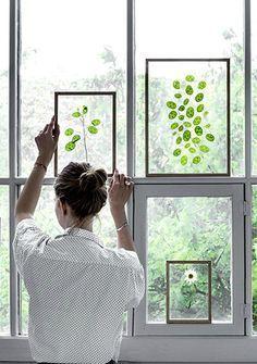 Decorare vetri