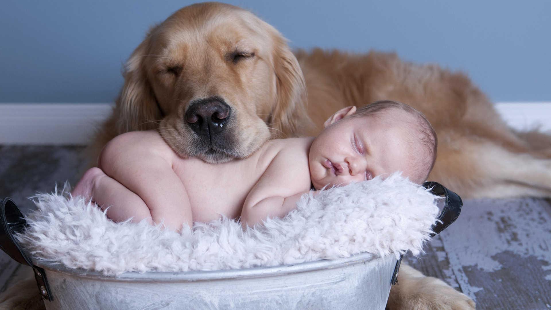 Quando si prendono cura dei più piccoli