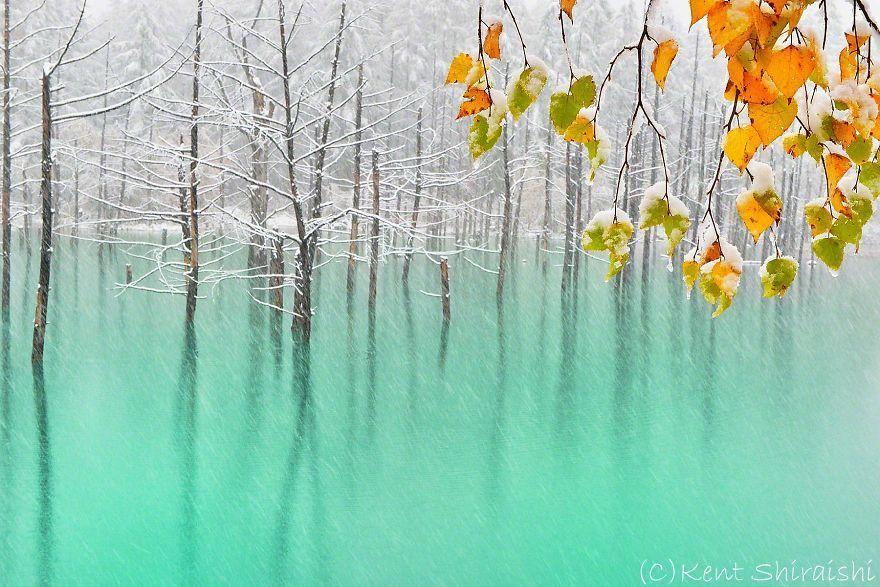 Il Blue Pond in autunno