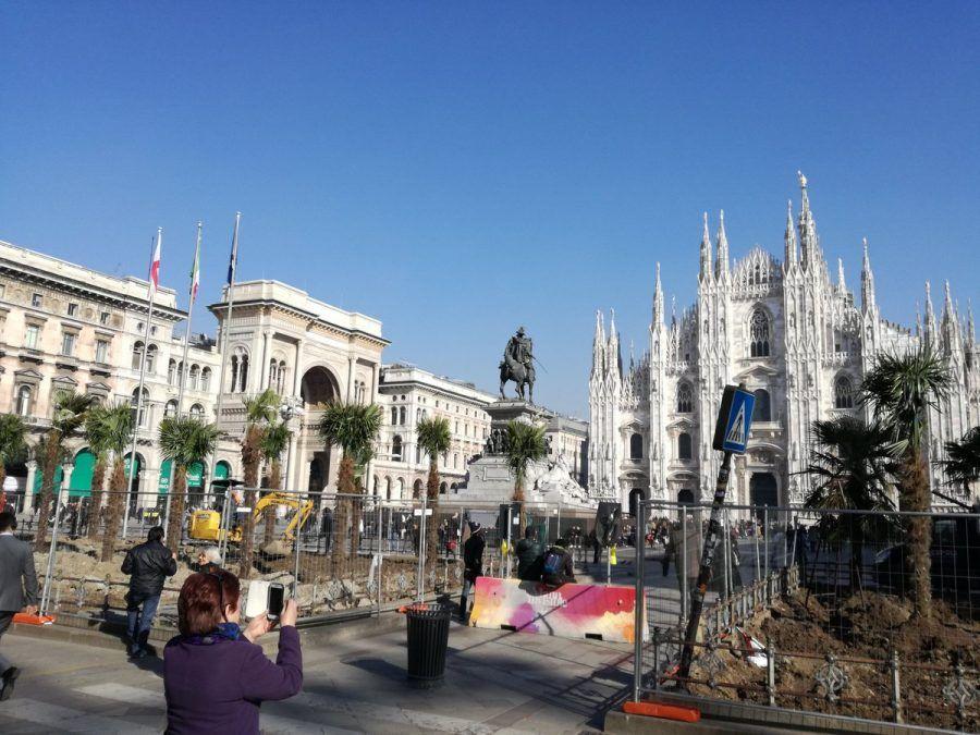 Le palme in piazza Duomo