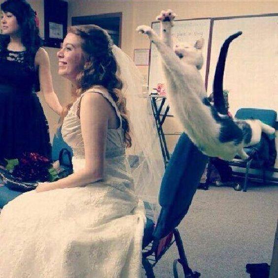 Foto alla sposa con intruso