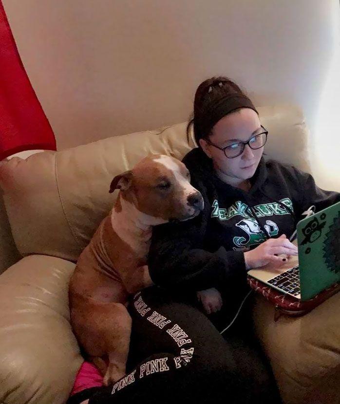 ... e adottino cani bisognosi di affetto!