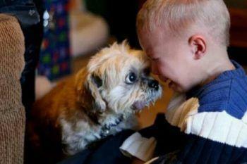 Bambini e animali, un rapporto speciale