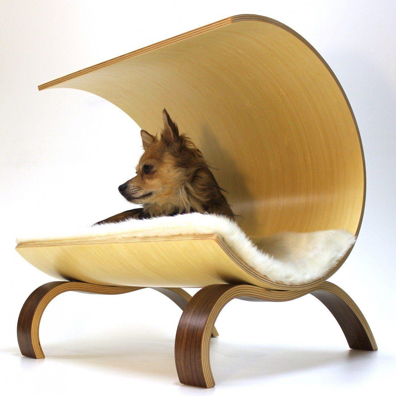 Dog Pod