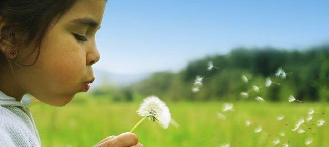Il polline, ma non solo, può causare diversi disturbi, come starnuti, tosse, asma.