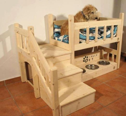 Arredare casa a misura di cane e gatto bigodino for Arredamento per cani