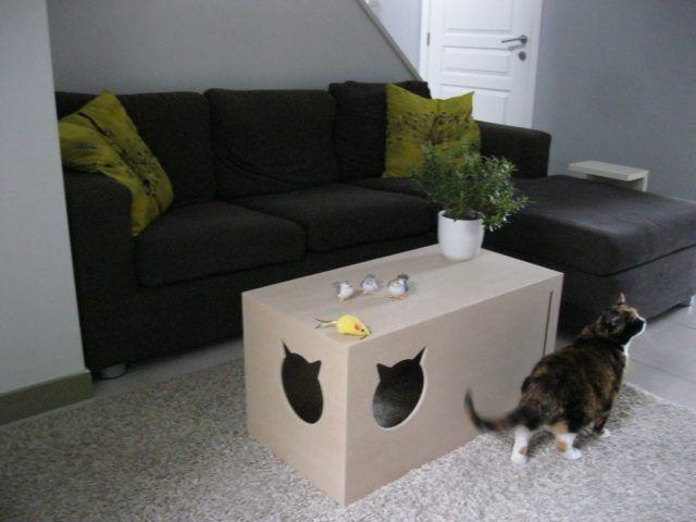 Cucce per gatti