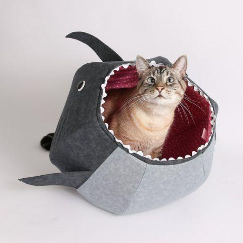Palla di squalo