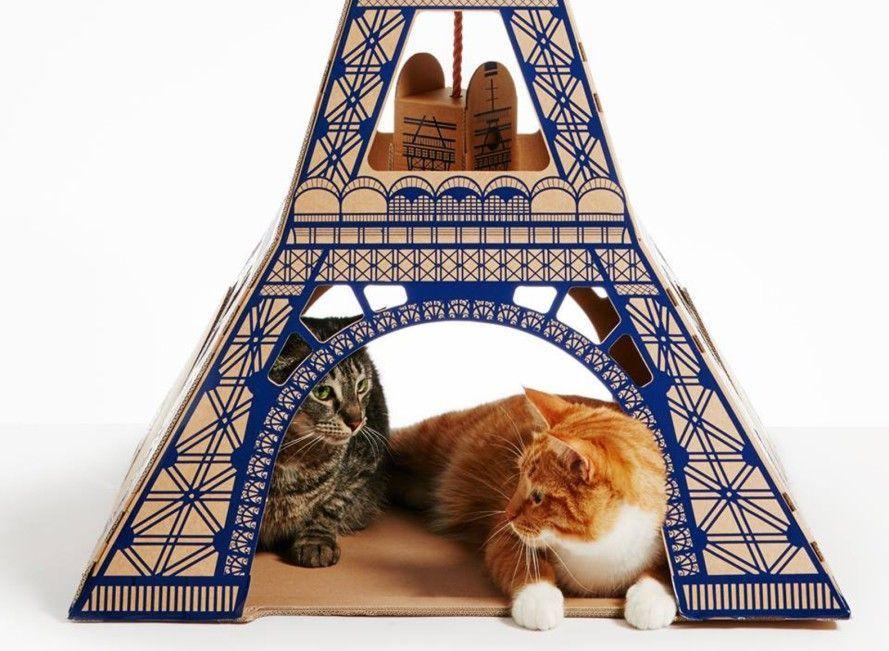 I gatti vivono nella Tour Eiffel