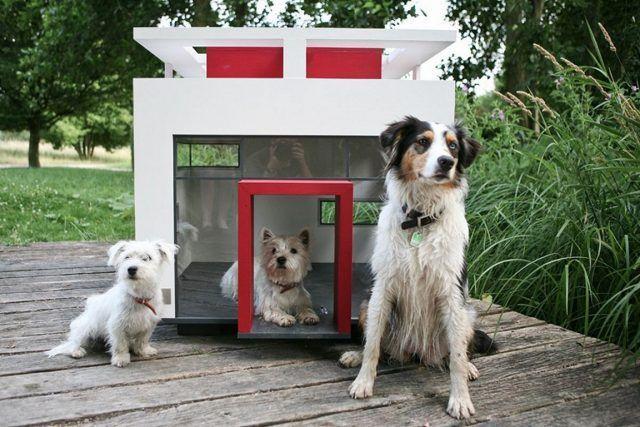 Cuccia di design per cani futuristica