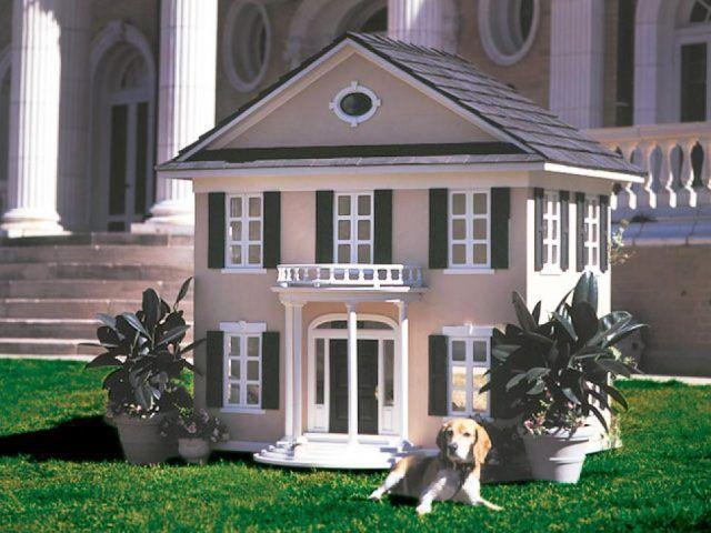 Cuccia di design per cani elegante