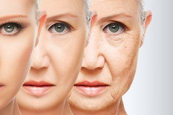 Come cambia il corpo in menopausa
