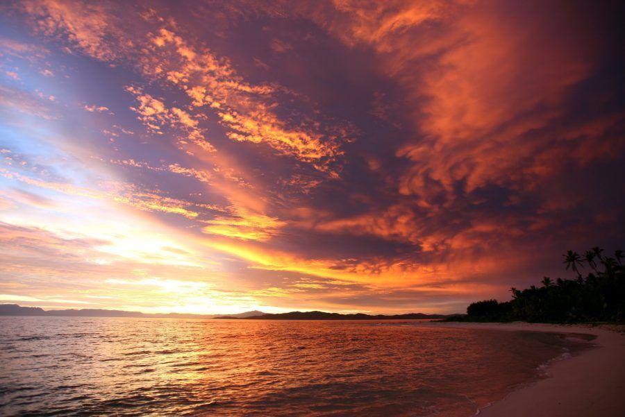 seedicksurf-sunrise2