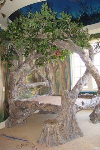 Dormire dentro un albero