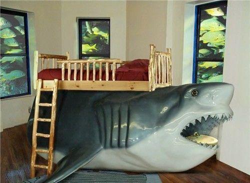 Dormire sopra uno squalo