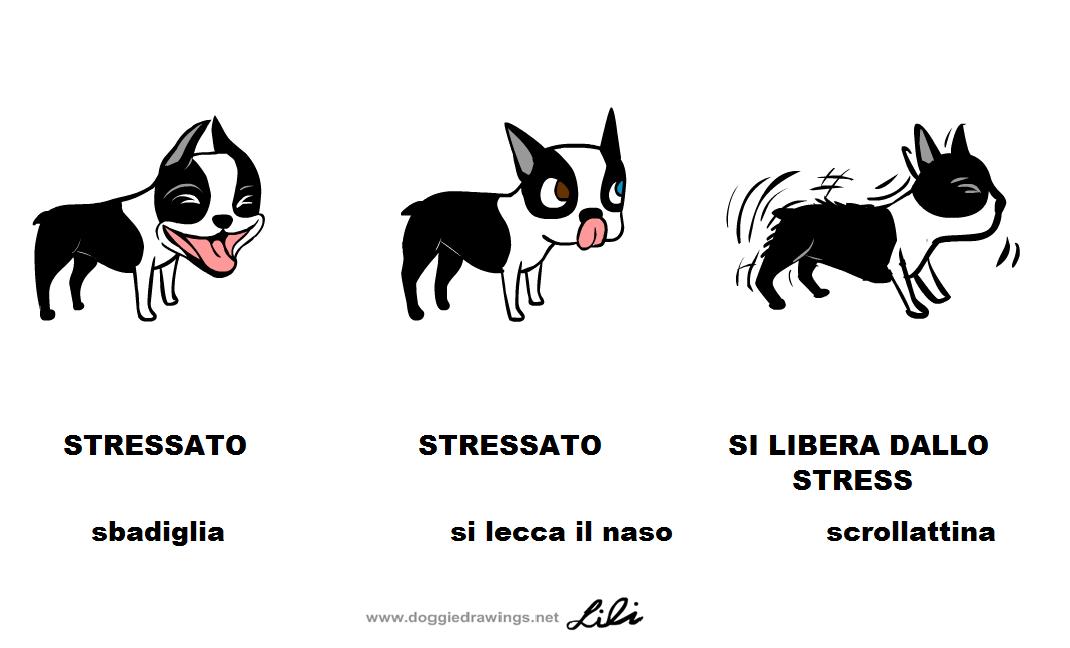 stressed-dog1