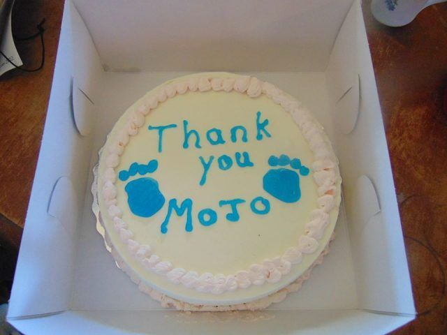 torta mojp