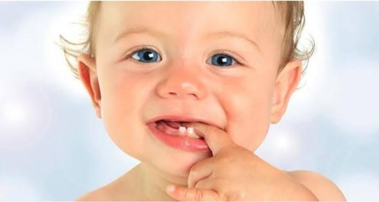 Il calendario dei dentini del bambino. Quando escono e in che ordine?