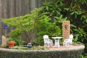 I mini garden sono la nuova moda del momento