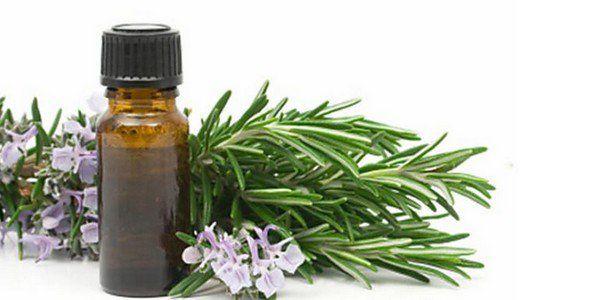 Olio essenziale di eucalipto: a cosa serve e come si usa