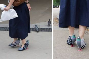 La donna giapponese che ha inventato le scarpe piccione