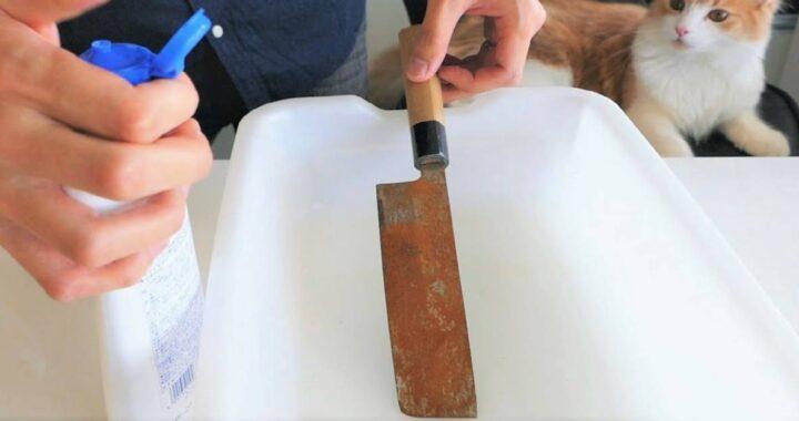 Compra un coltello arrugginito per 3 dollari e il venditore pensa di averlo fregato ma poi capisce di aver fatto un terribile errore