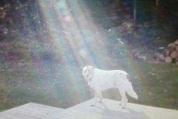 Uno strano raggio di luce illumina Hero, sappiamo adesso chi era e da dove veniva