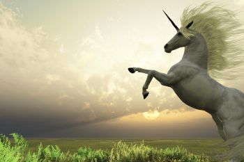 Gli unicorni esistono… Ce n'è uno in Italia!