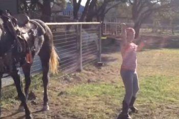 Accendono la musica accanto il cavallo, quest'ultimo reagisce in modo inaspettato