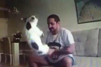 Nota delle strane ferite sul suo cagnolino, così decide di mettere una telecamera nascosta