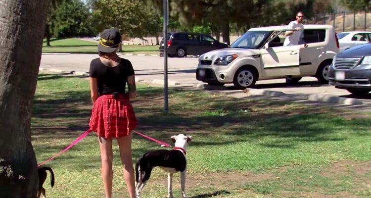 Un veterano di rivede i suoi cani e il momento è emozionante