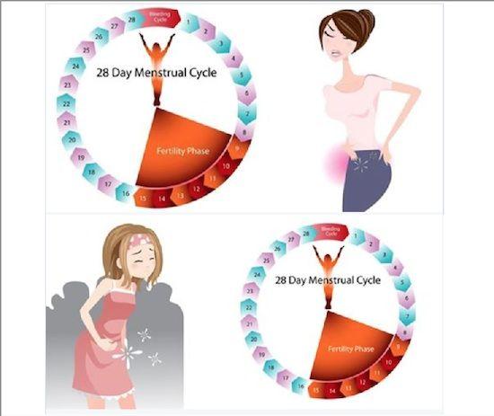 ciclo in persone sovrappeso