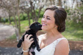 Cuccioli al posto dei bouquet: la nuova tendenze dei matrimoni