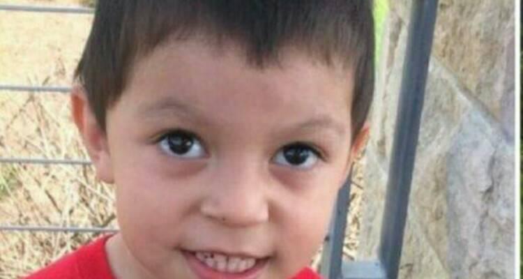 Bimbo di tre anni scompare, il cane del vicino