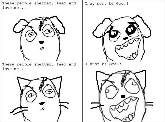 Le Differenze Più Divertenti Tra Cani E Gatti Rappresentate Con 29
