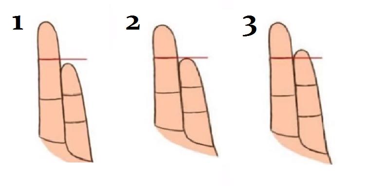 La lunghezza del tuo dito mignolo, può rivelare alcune cose interessanti sulla tua personalità o su quella degli altri.