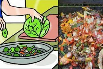 9 residui di cibo avanzato che non dovremmo mai buttare via
