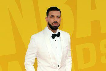 Ecco perché Drake collezione Birkin di Hermès