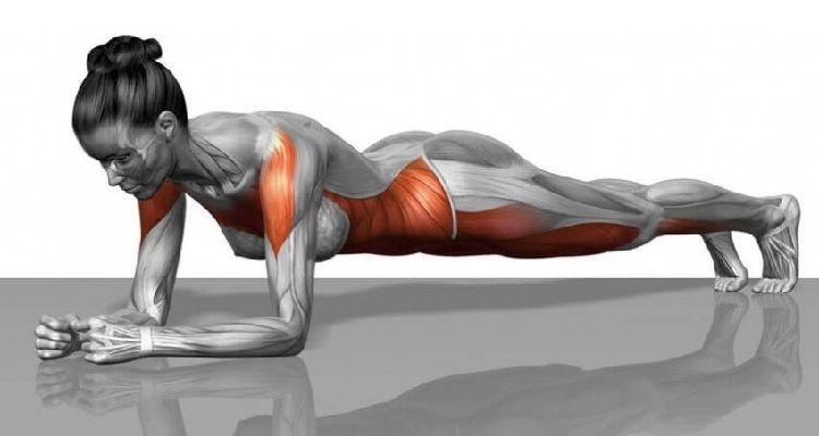 7 semplici esercizi che cambieranno il tuo corpo in 4 settimane