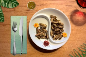 Mangereste mai degli insetti per pranzo o cena?