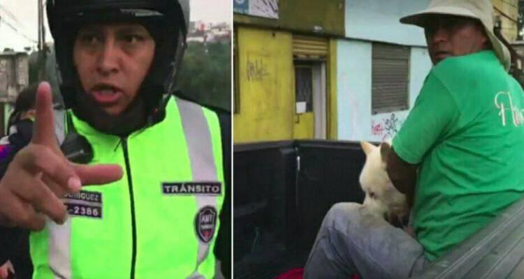 Il poliziotto e il cane