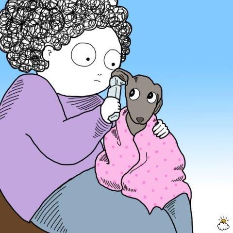 un cane dal veterinario