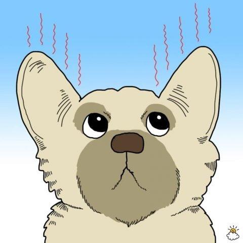 cane con orecchie calde