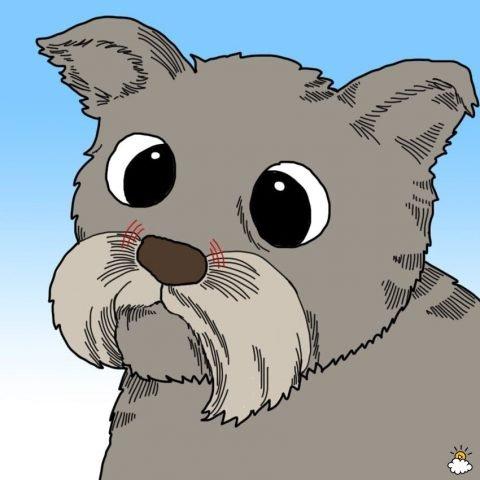 un cane con naso asciutto