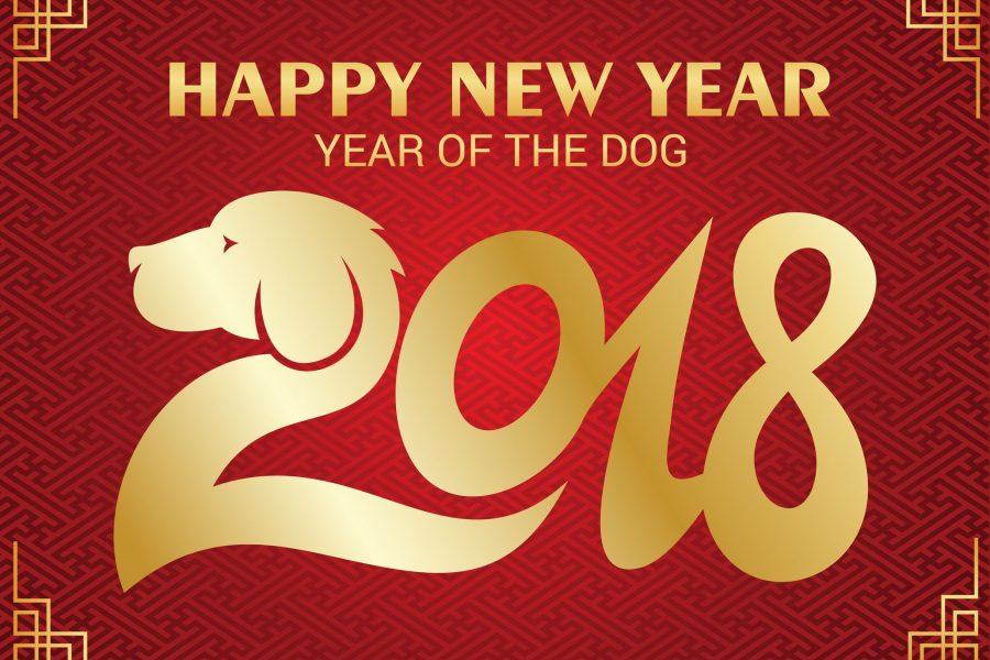 Capodanno cinese 2018, è l'anno del cane. Come sarà?